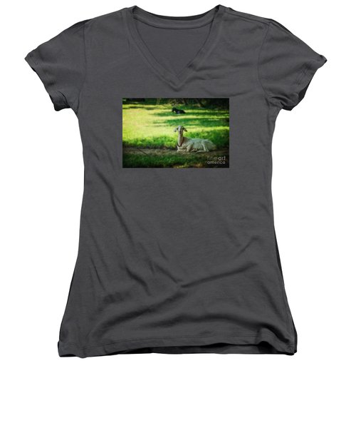 Peaceful Pasture Women's V-Neck
