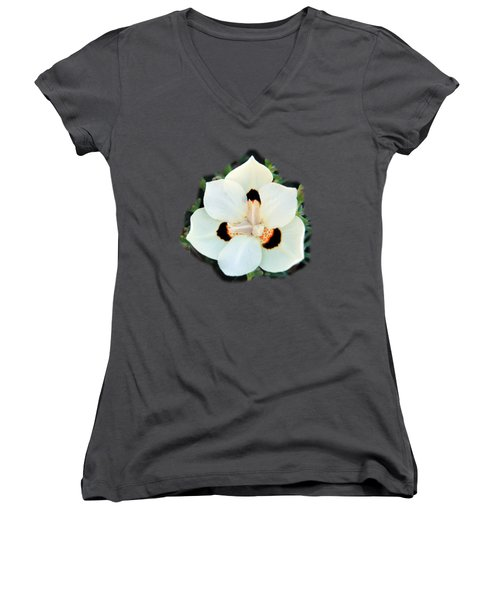 Peacock Flower T-shirt Women's V-Neck T-Shirt