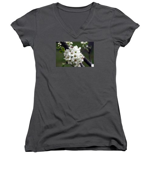 Women's V-Neck T-Shirt (Junior Cut) featuring the photograph Pear Blossoms In Spring by Sheila Brown