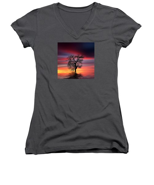 Pear On Lake Women's V-Neck T-Shirt (Junior Cut) by Bess Hamiti