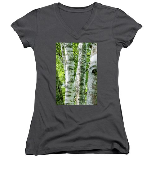 Peek A Boo Birch Women's V-Neck T-Shirt (Junior Cut) by Greg Fortier