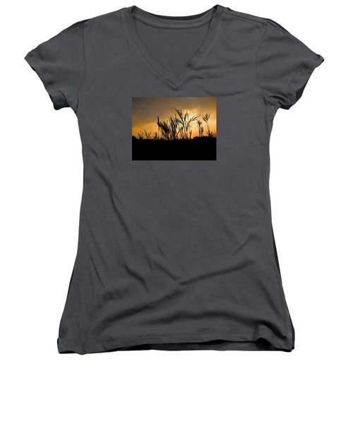 Peeking Out Women's V-Neck T-Shirt (Junior Cut) by Tim Good