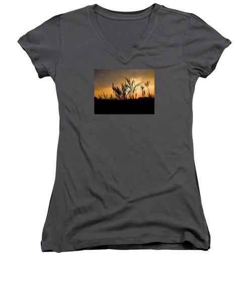 Peeking Out Women's V-Neck T-Shirt