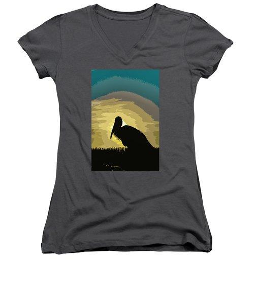 Pelican Paint Women's V-Neck T-Shirt