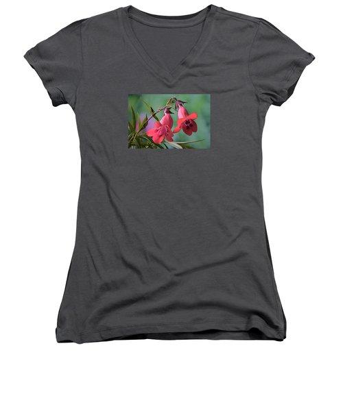 Penstemon Women's V-Neck T-Shirt (Junior Cut) by Terence Davis