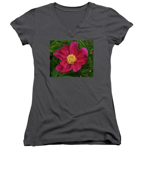 Women's V-Neck T-Shirt (Junior Cut) featuring the photograph Peony In Rain by Sandy Keeton