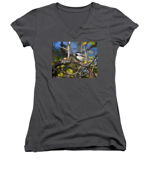 Perched Black-capped Chickadee Women's V-Neck
