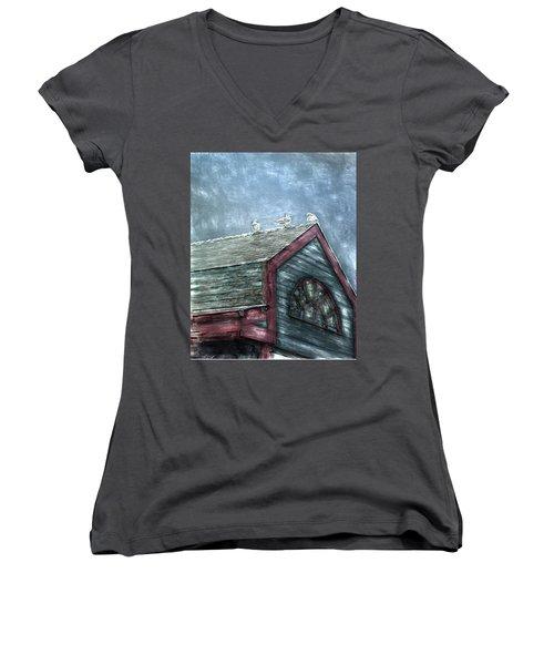 Perched Women's V-Neck T-Shirt