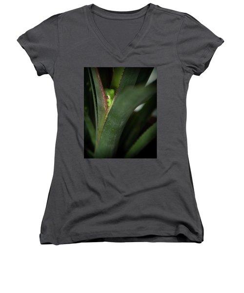 Perching With Comfort Women's V-Neck T-Shirt (Junior Cut)