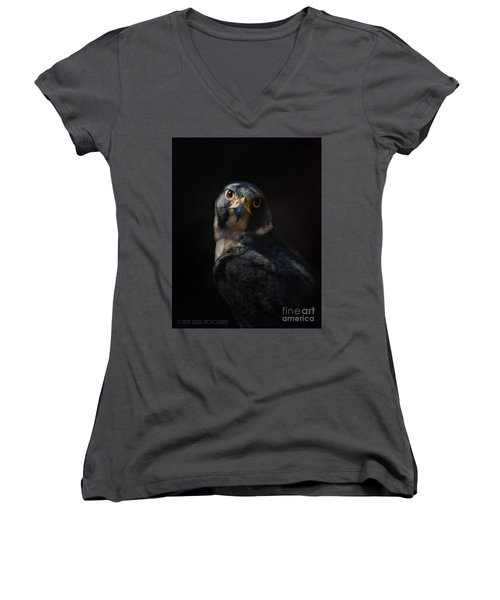 Peregrine Falcon Women's V-Neck T-Shirt (Junior Cut) by Kathy Russell
