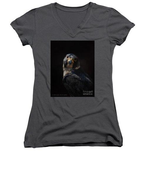 Peregrine Falcon Women's V-Neck T-Shirt