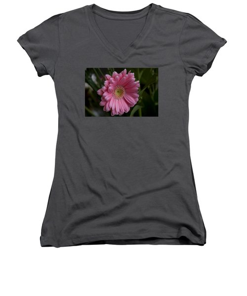 Perfection Women's V-Neck T-Shirt