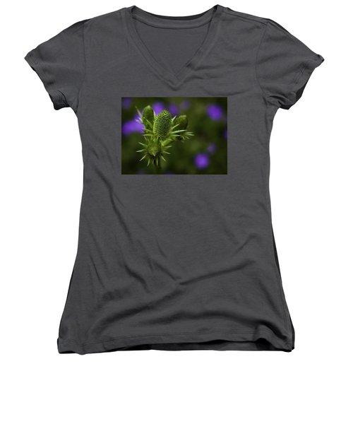 Petals Lost Women's V-Neck T-Shirt (Junior Cut) by Jason Moynihan
