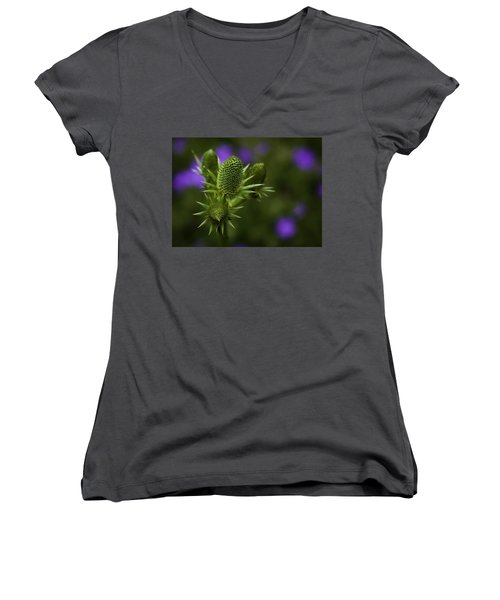 Petals Lost Women's V-Neck T-Shirt
