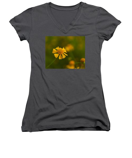Petals Of Nature Women's V-Neck (Athletic Fit)