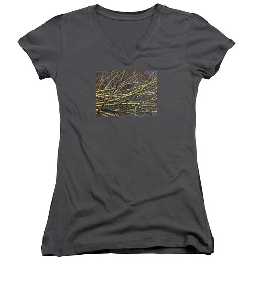 Phase Women's V-Neck T-Shirt