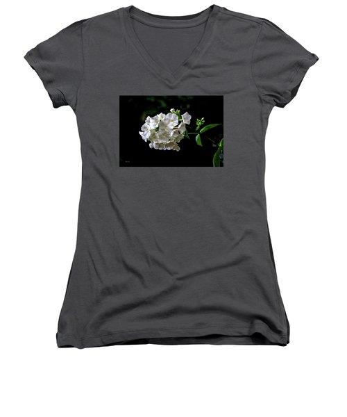 Phlox Flowers Women's V-Neck (Athletic Fit)
