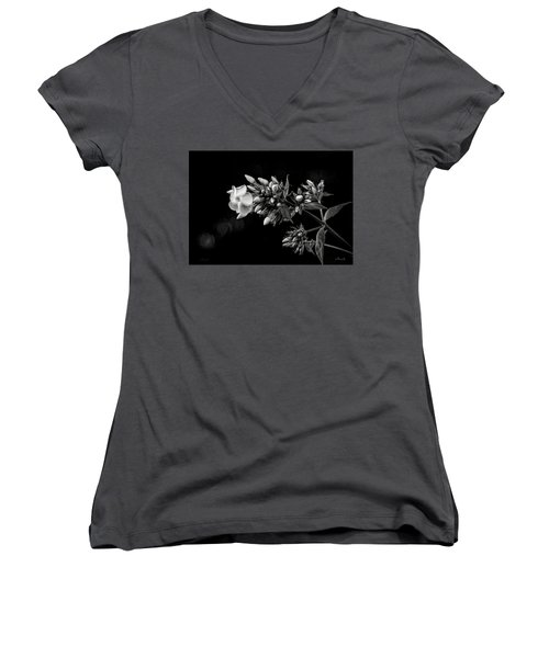 Phlox In Black And White Women's V-Neck (Athletic Fit)