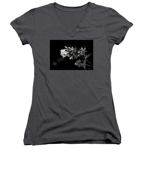 Phlox In Black And White Women's V-Neck
