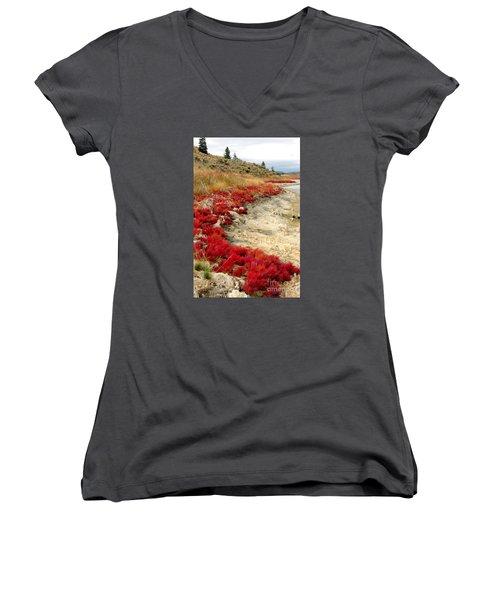 Pickleweed Women's V-Neck T-Shirt