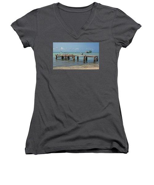 Pier For Birds Women's V-Neck T-Shirt