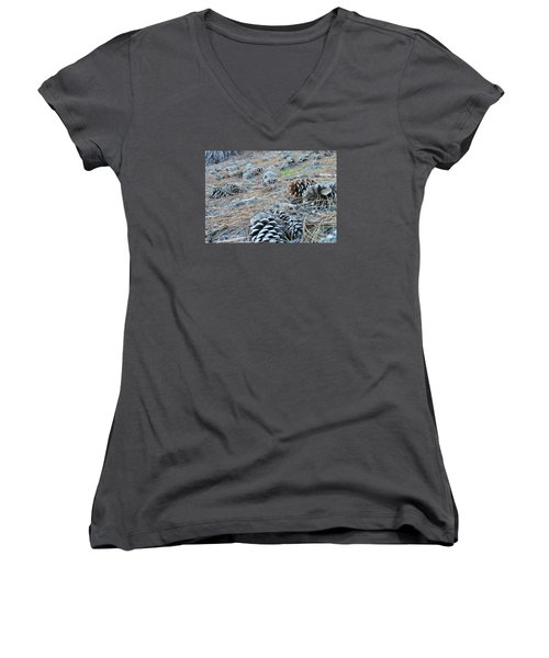Pine Cones Women's V-Neck T-Shirt (Junior Cut) by Kay Gilley