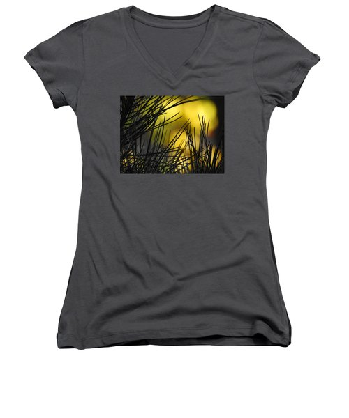 Pineview Women's V-Neck (Athletic Fit)