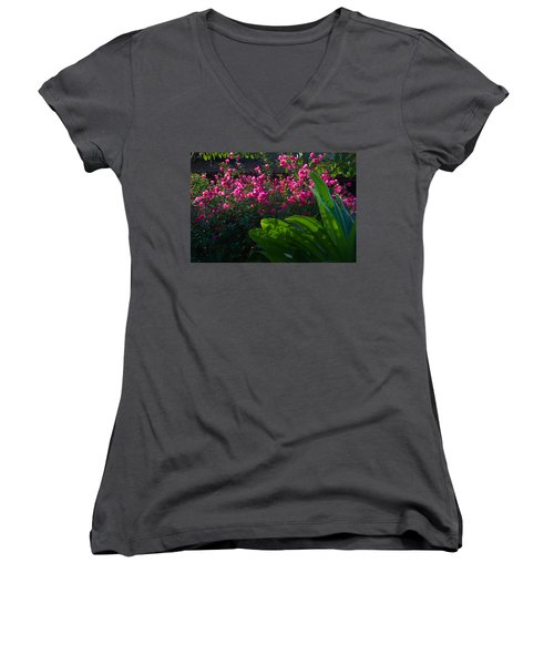Women's V-Neck T-Shirt (Junior Cut) featuring the photograph Pink And Green by Jim Walls PhotoArtist