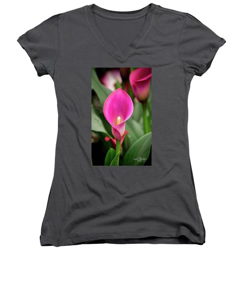 Pink Calla Women's V-Neck (Athletic Fit)