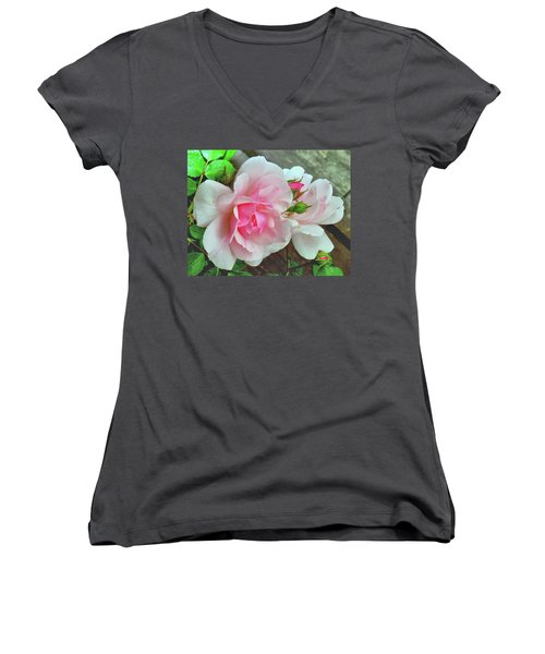 Women's V-Neck T-Shirt (Junior Cut) featuring the photograph Pink Cluster Of Roses by Janette Boyd