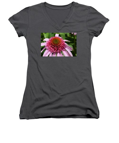 Pink Coneflower Close-up Women's V-Neck (Athletic Fit)