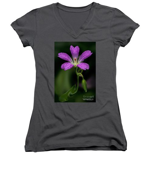 Pink Fantasy Women's V-Neck T-Shirt