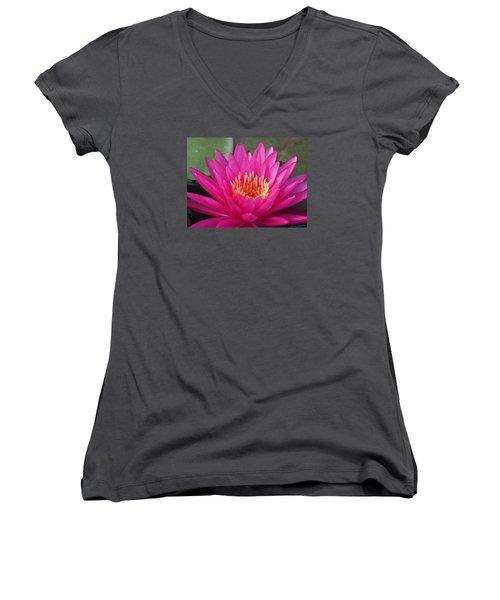 Pink Flame Waterlily Women's V-Neck T-Shirt