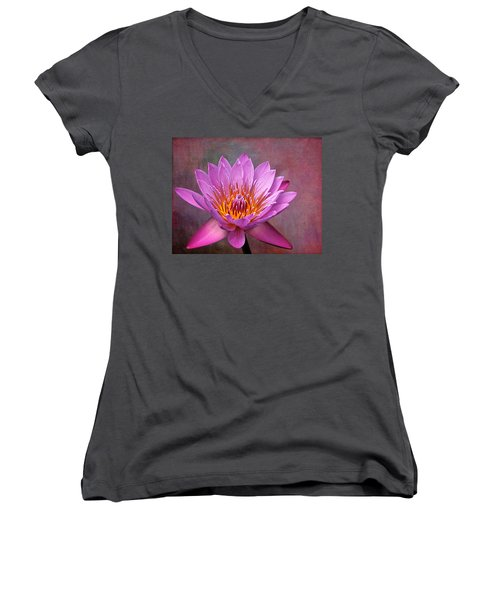 Pink Lady Women's V-Neck T-Shirt