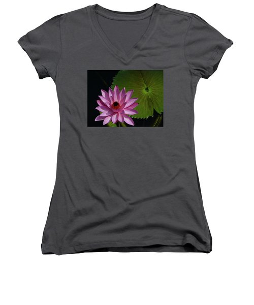 Pink Lotus Women's V-Neck T-Shirt (Junior Cut) by Evelyn Tambour