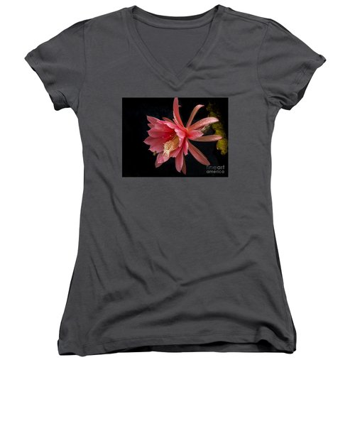 Pink Orchid Cactus Flower Women's V-Neck T-Shirt (Junior Cut) by Inge Riis McDonald