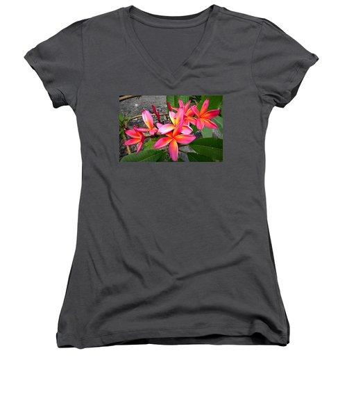 Pink Plumerias Women's V-Neck T-Shirt (Junior Cut) by Lori Seaman