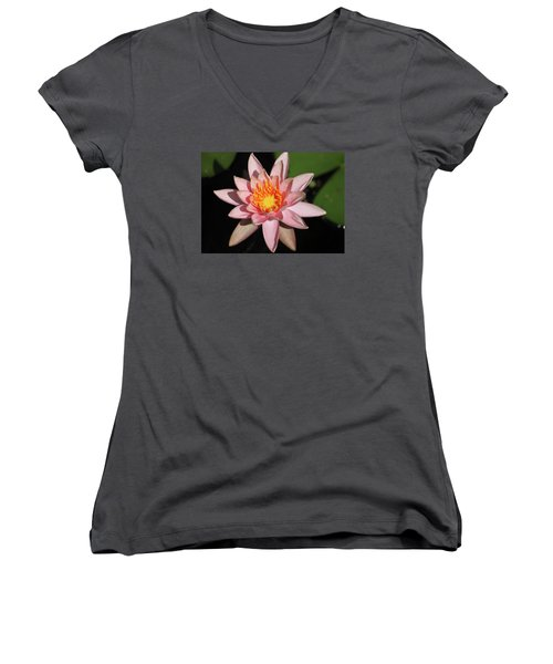Pink Water Lily 2016 Women's V-Neck T-Shirt (Junior Cut) by Suzanne Gaff