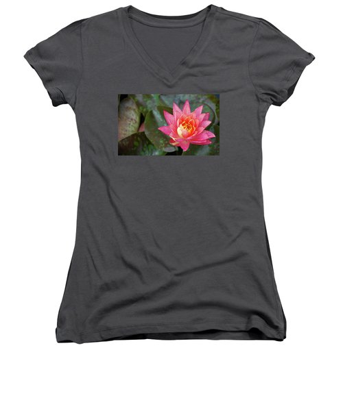 Pink Water Lily Beauty Women's V-Neck T-Shirt
