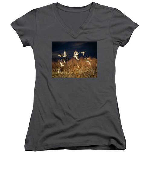 Pintails And Wigeons Women's V-Neck T-Shirt