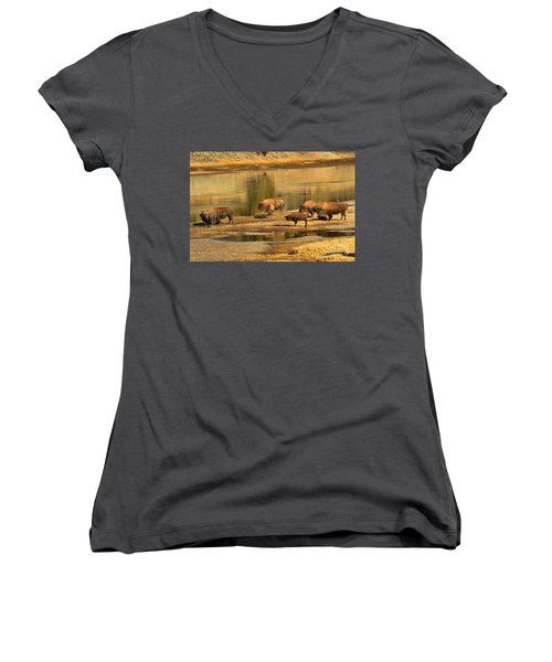 Women's V-Neck T-Shirt (Junior Cut) featuring the photograph Planning To Cross by Adam Jewell