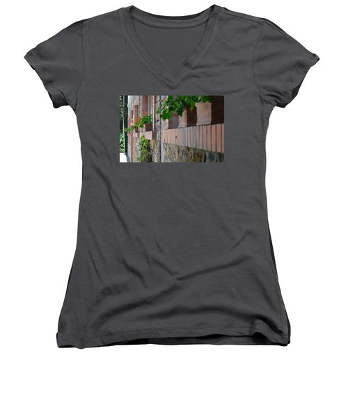 Plants In Windows Women's V-Neck