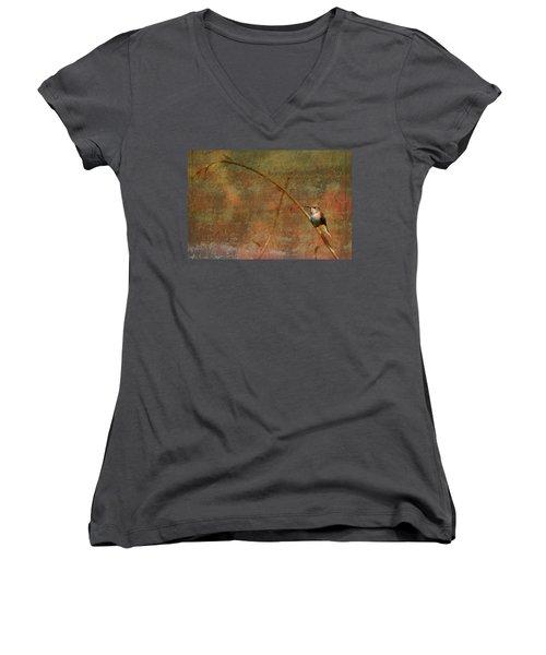 Plate 225 - Hummingbird Grunge Series Women's V-Neck T-Shirt