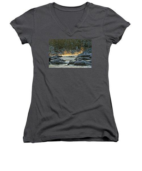 Playfull Mist Women's V-Neck T-Shirt (Junior Cut) by Robert Charity