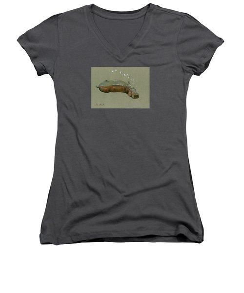 Playing Hippo Women's V-Neck T-Shirt