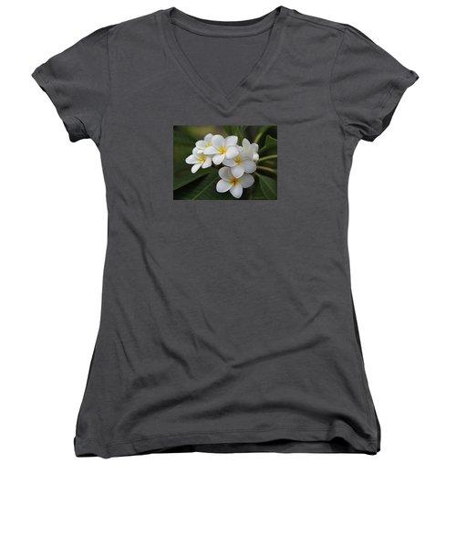 Women's V-Neck T-Shirt (Junior Cut) featuring the photograph Plumeria - Golden Hearts by Kerri Ligatich