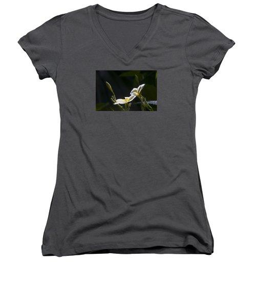 Plumeria Women's V-Neck T-Shirt (Junior Cut) by Morris  McClung
