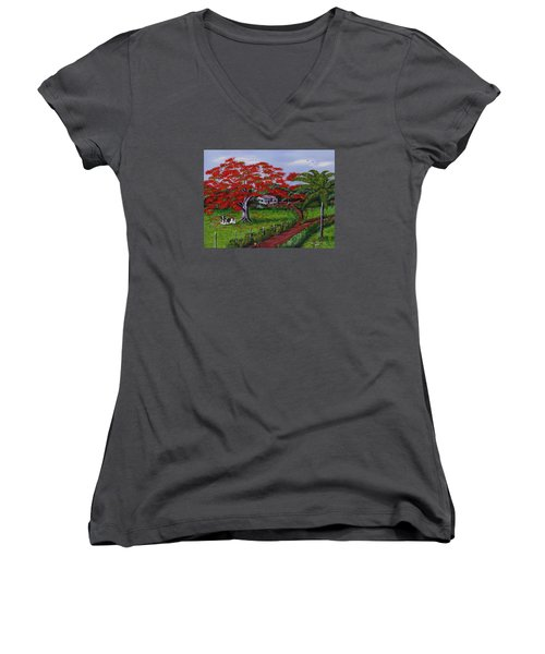 Poinciana Blvd Women's V-Neck T-Shirt (Junior Cut) by Luis F Rodriguez