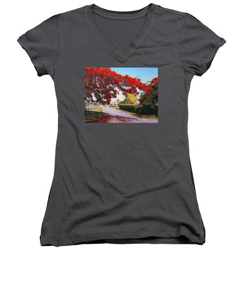 Poinciana Shadows Women's V-Neck