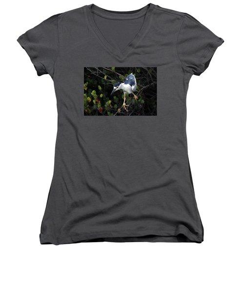 Poise Women's V-Neck T-Shirt